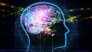 Is Your Trading Brain Stopping You From Being A Trader