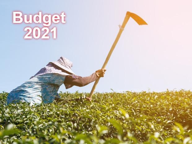 Budget Highlights 2021 - Bramesh's Technical Analysis